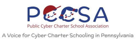 Public Cyber Charter School Association Logo